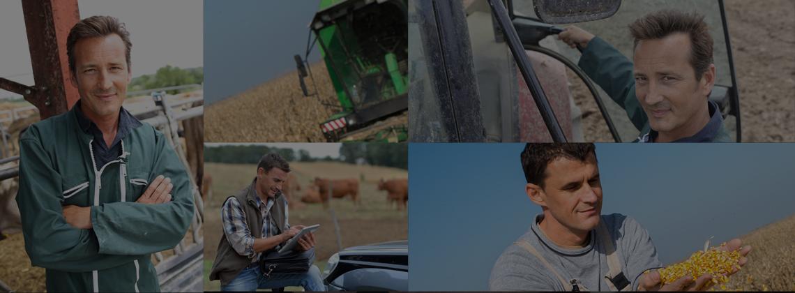 Expert comptable agriculteur